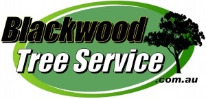 Blackwood Tree Service Logo